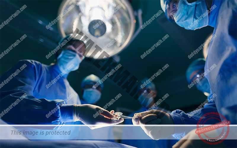 Cara Memasak Ikan Gabus Untuk Obat pasca operasi atau luka operasi